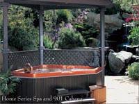 Cal Spas (США)